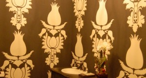 Debbie Hayes' Stenciled Decorative Finishes
