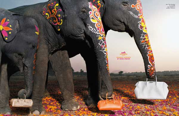 Decorated Indian Elephants Hermes Ad Campaign Bags Paint