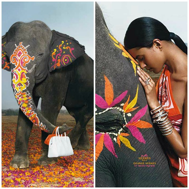 Decorated Indian Elephants Hermes Ad Campaign Paint