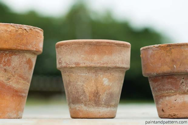 Aged Terra Cotta Pot | Paint + Pattern