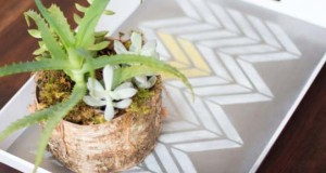 Serving Up Stencil Ideas for Decorative Trays